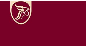 Minerva Elektronik – Flir , HT-Italia , Extech , PDK , KRI , Isotech , Time Electronics , Microtest , Et-System, Cetc Türkiye Distribütörü – Temsilcisi